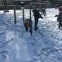 Snow day 1163.JPG