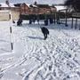 Snow day 1178.JPG