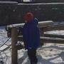 Snow day 1202.JPG