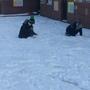Snow day 1211.JPG