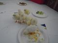 chick food (19).JPG