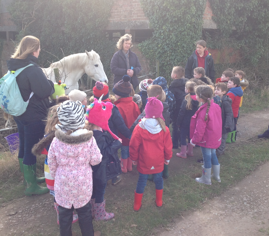 Picasso Class (EYFS) visit to Mell Farm