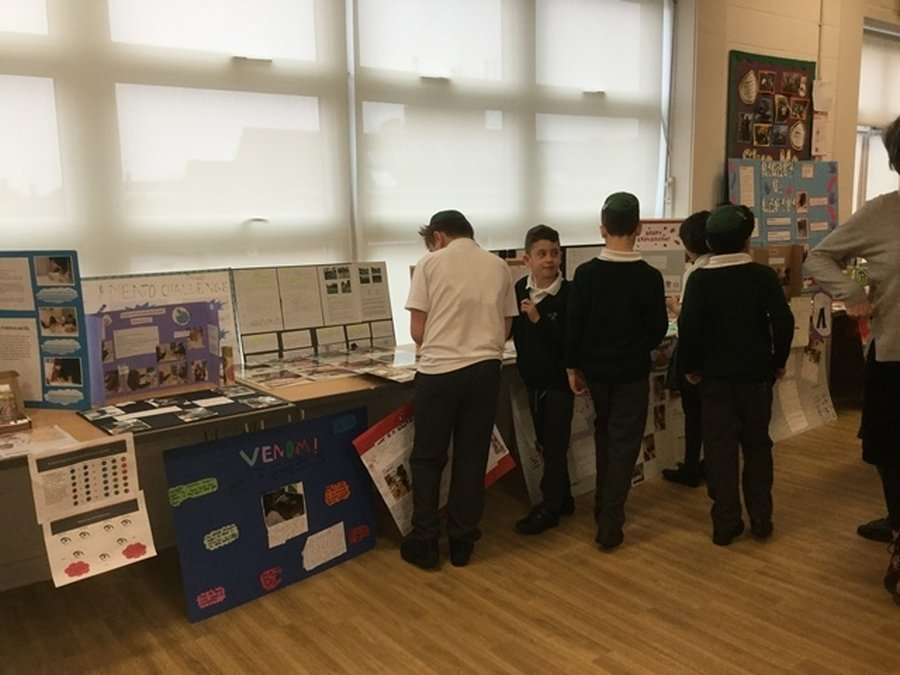 Science Fair April 2018