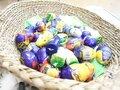 Easter Egg hunt (5).JPG