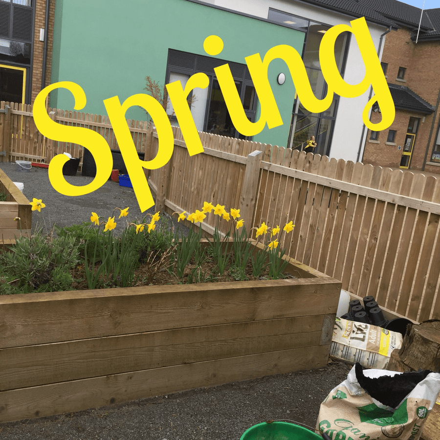 The sun was shining, the jumpers were off; Tannaghmore is glad to welcome the first signs of Spring in the school garden.
