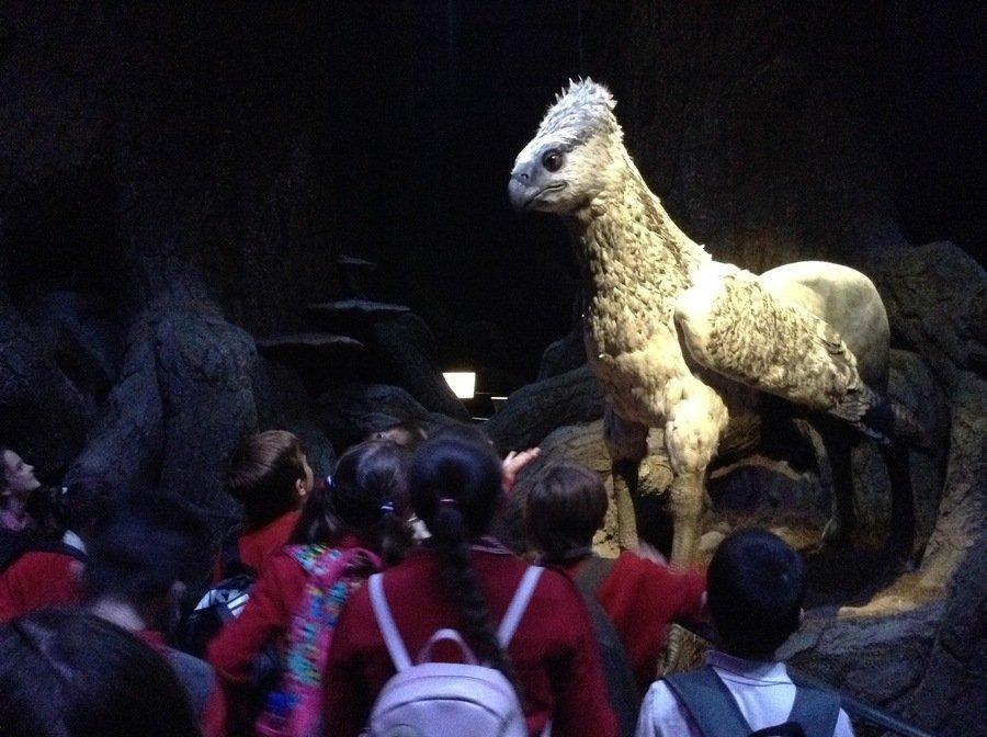 We bowed to Buckbeak!