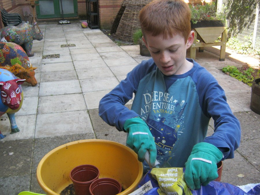 practical science with Felix learning what a seed needs to grow.