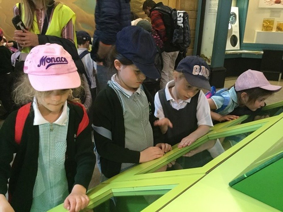 Year 1 and 2's School Trip May 2018