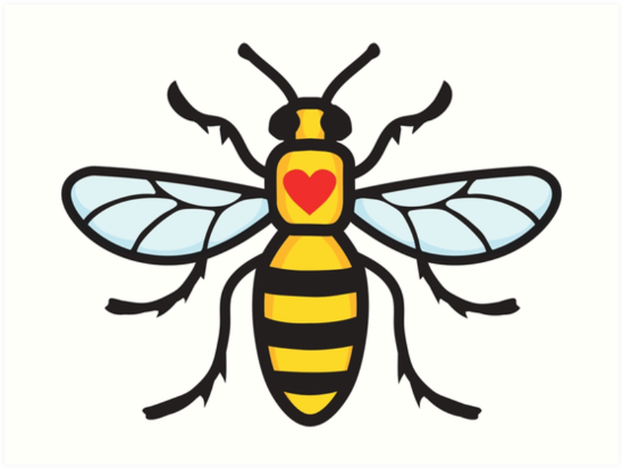 To view other entries from around Manchester - Click on the Bee.