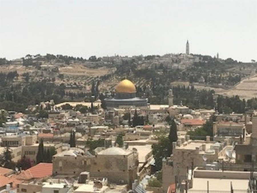 The view across the city from the tower of Phasael