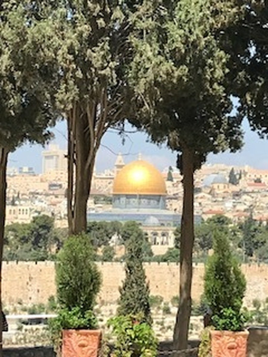 An 'Arty' shot from the Mount of Olives on Sunday morning.