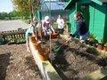 medium_gardening_club_5_ (1).jpg