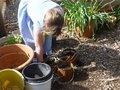 medium_gardening_club_11_ (1).jpg
