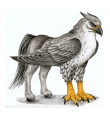 Our Class Hippogriff