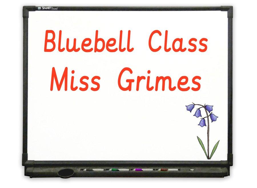 Nursery - Go to Bluebell Class