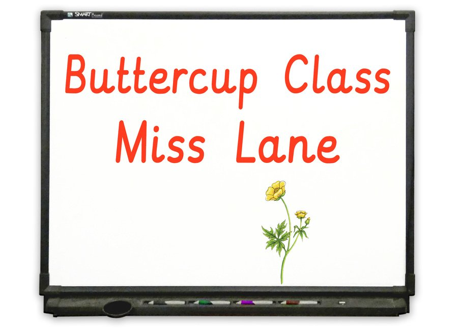 Nursery - Go to Buttercup Class