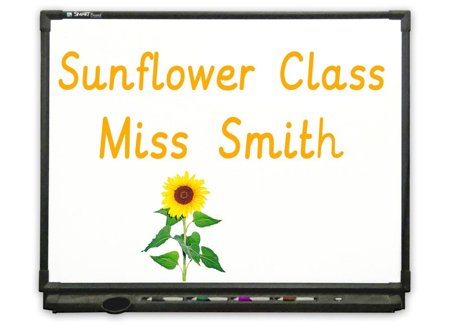 Reception, Year 0 - Go to Sunflower Class