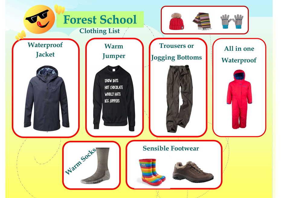 Meridian Community Primary School & Nursery - Forest School