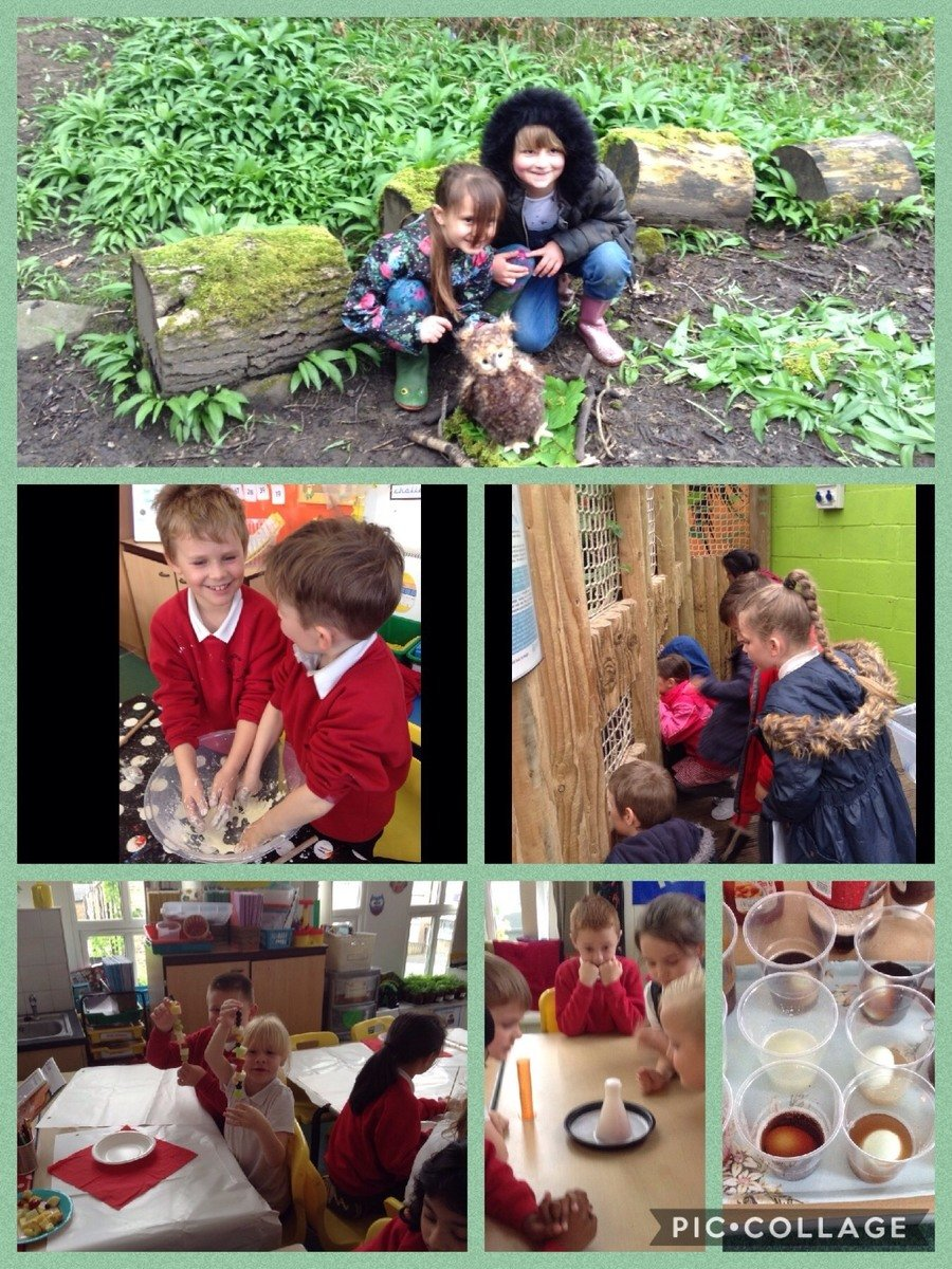 At Ingrow we love to learn outdoors. We have the opportunity to explore a variety of habitats and regularly have hands on practical experiences in our Science lessons.