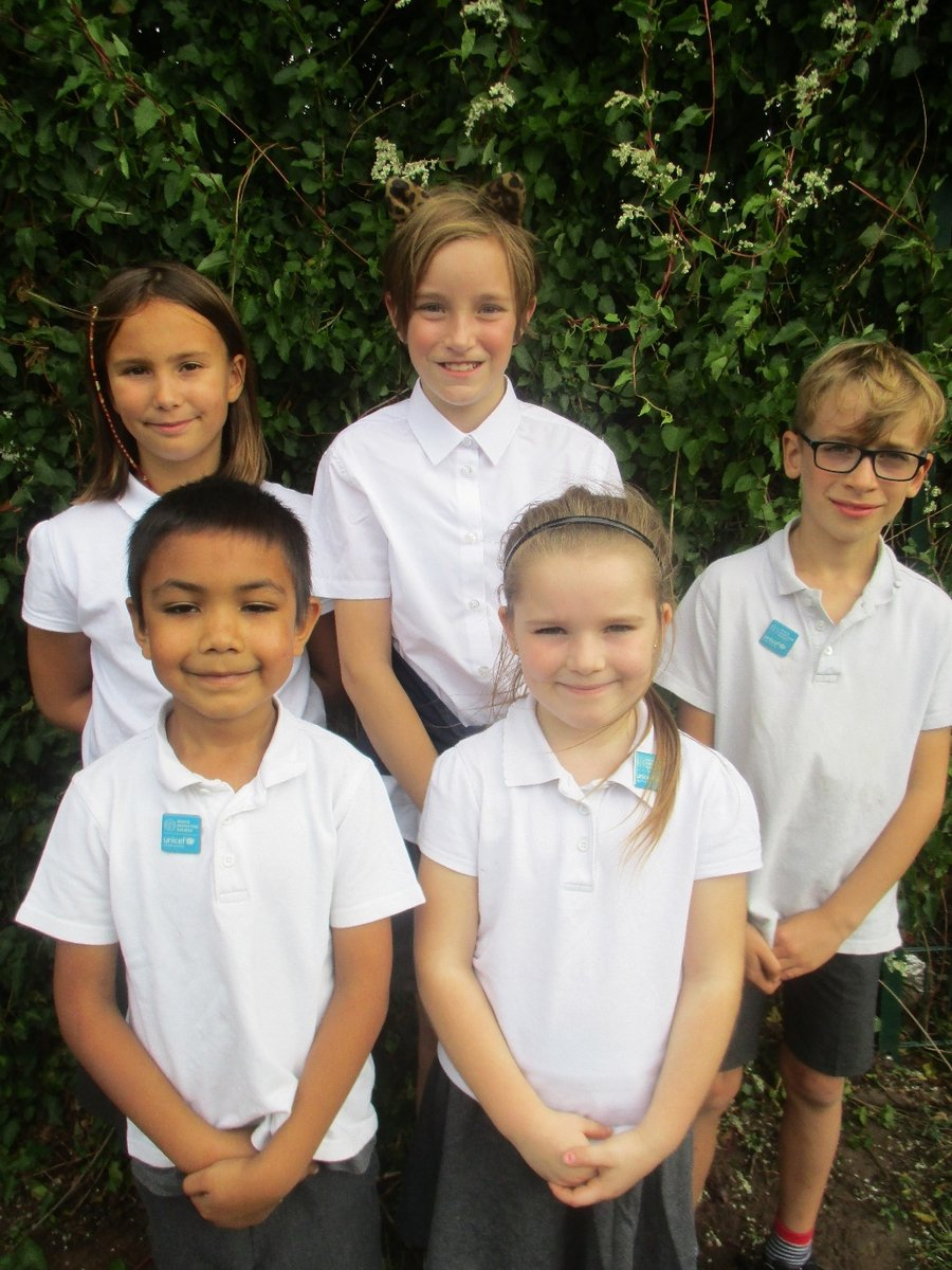 Our Rights Respecting Ambassadors