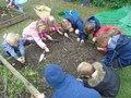 gardening (38).JPG