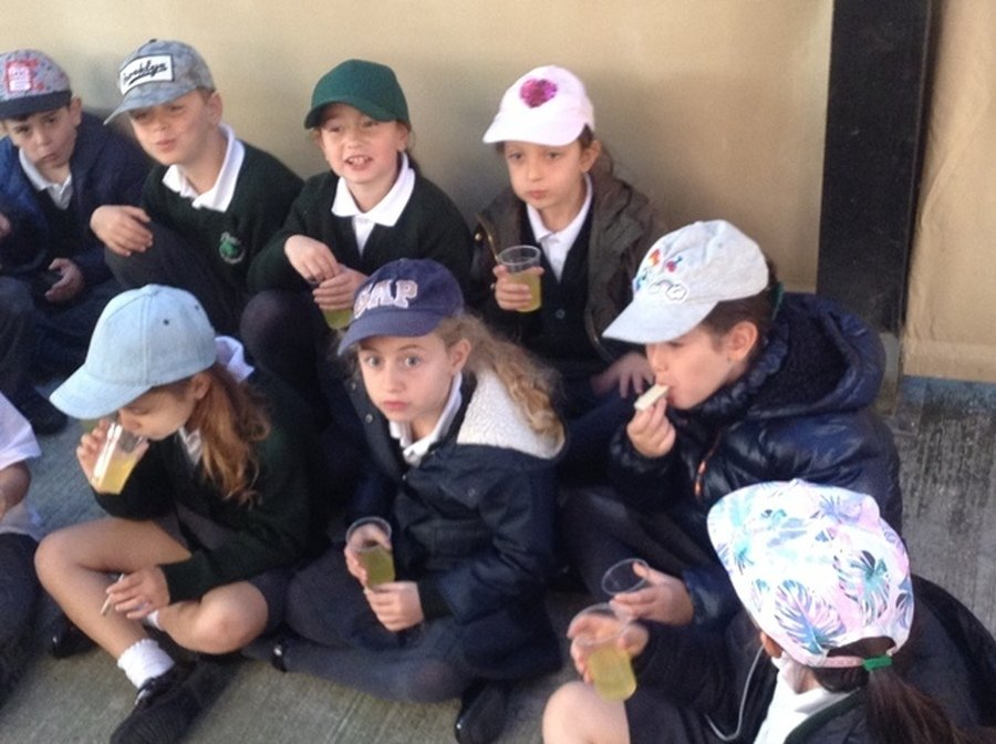 Year 3 Succot Trip September 2018
