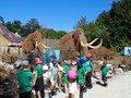 safari park 055.jpg
