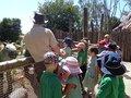 safari park 050.jpg