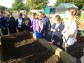 Mr Connor comes to school to plant wheat (3).JPG