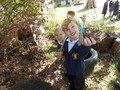 Amelia enjoying finding autumn things.JPG
