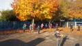 Autumn leaves on the playground