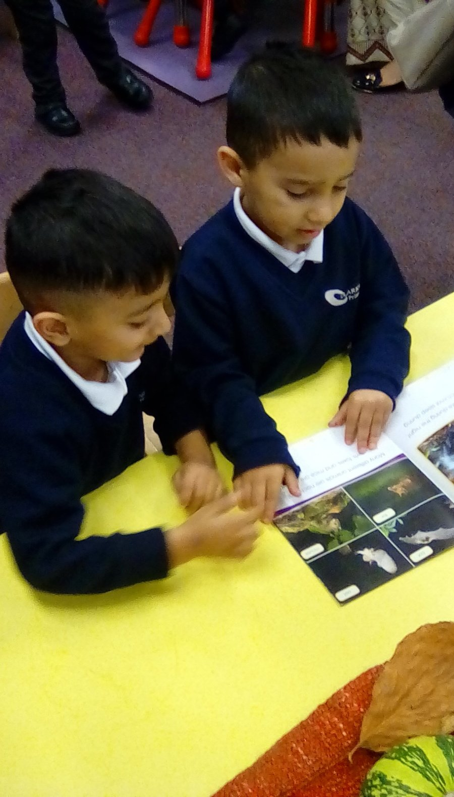 Enjoying looking at non-fiction books and listening to stories about autumn time animals.
