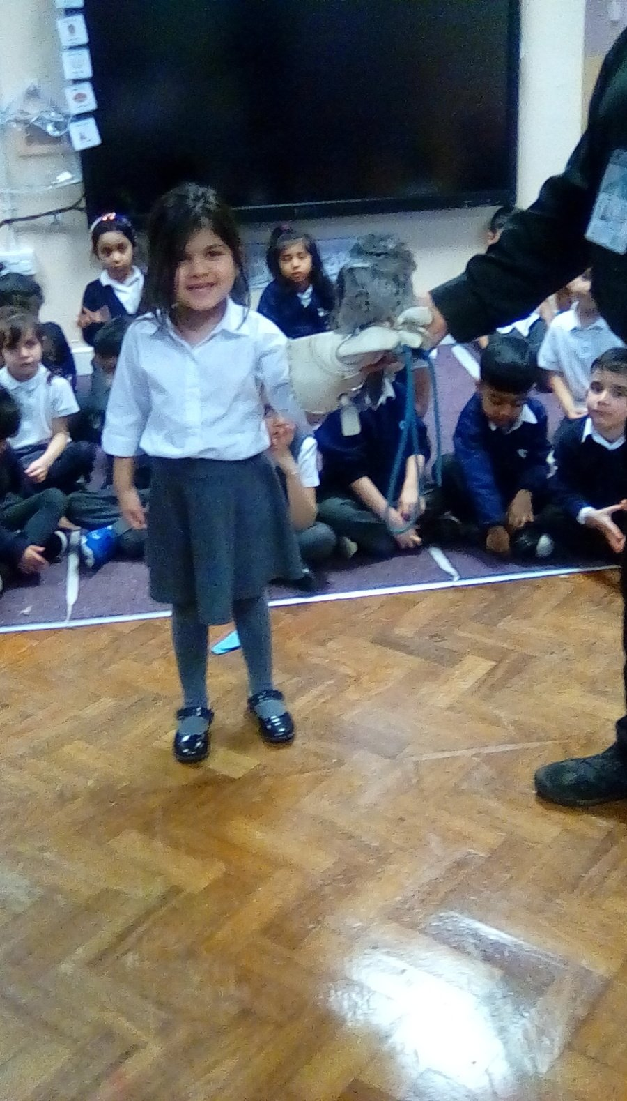 Observing, touching, feeling and handling real owls when Owls For Education came to visit school.