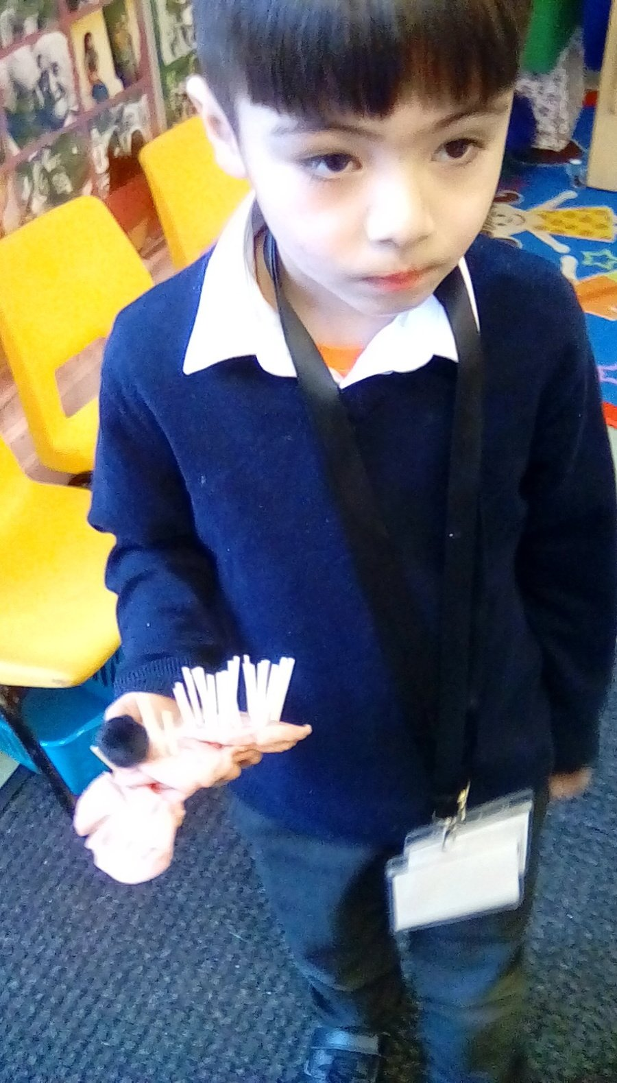 Making models of hedgehogs using a variety of media and materials.