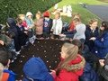 P3B planting allium bulbs_.jpg