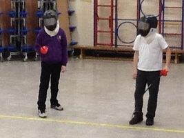 Fencing 5.JPG