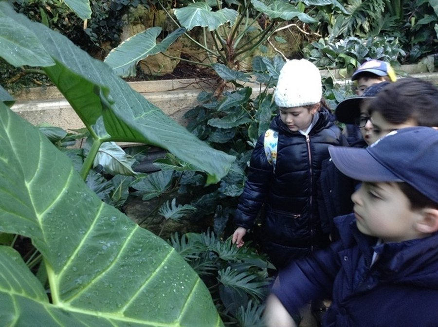 Year 3 Trip to Kew Gardens January 2019