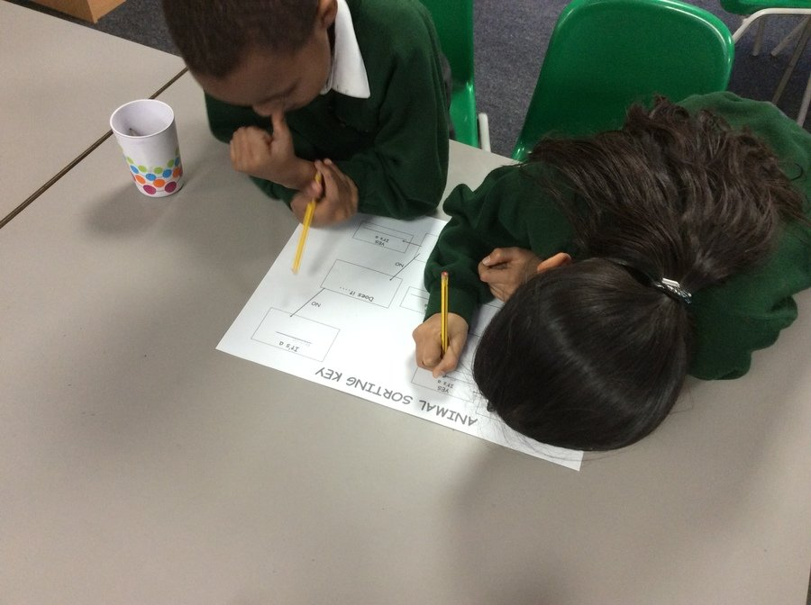 Y2 children had a go at making their own classification keys after trying out Year 6's versions!