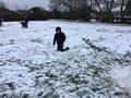 snow (60).JPG