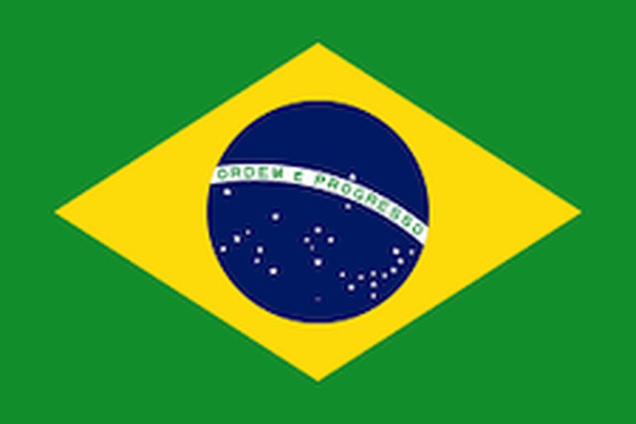 YEAR 6 (BRAZIL)