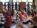 Yoga Katz (7).JPG