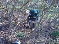 gardening (5).JPG