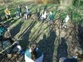 gardening (15).JPG