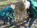 gardening (18).JPG
