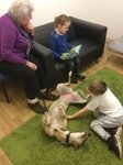 Willow Pet Dog Therapy Pic 1 19.3.19.JPG