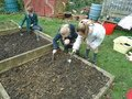 gardening (23).JPG