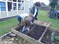 gardening (37).JPG