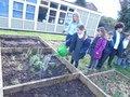 gardening (46).JPG