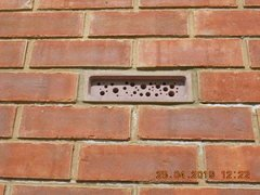 Bee bricks.jpg