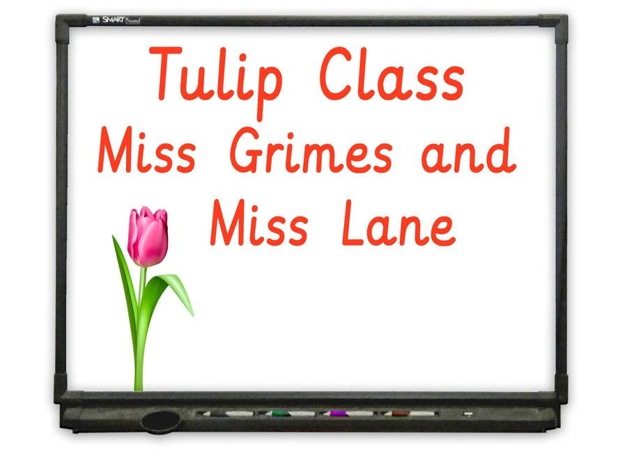 Afternoon Nursery - Go to Tulip Class
